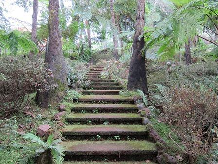 Concevoir un escalier de jardin : les critères indispensables