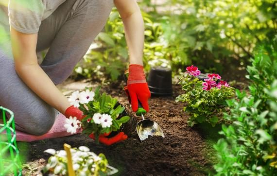 Quatre astuces pour mettre en valeur votre jardin